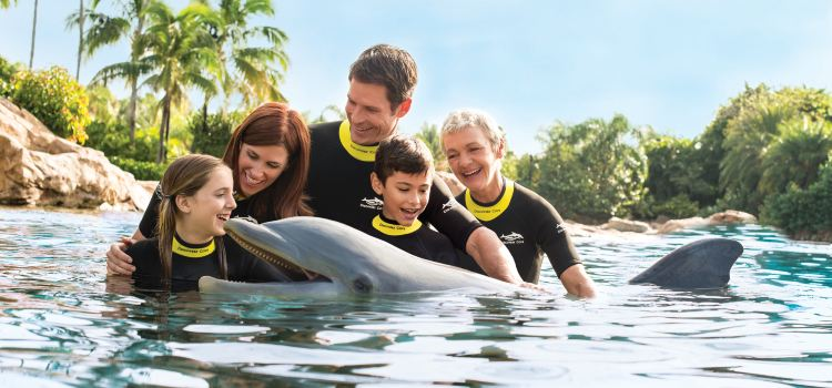 Discovery Cove3