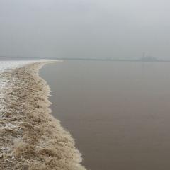 하이닝 조수 해일 여행 사진