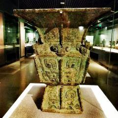 河南博物院用戶圖片