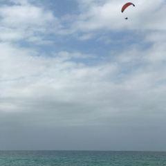 曼利海灘用戶圖片