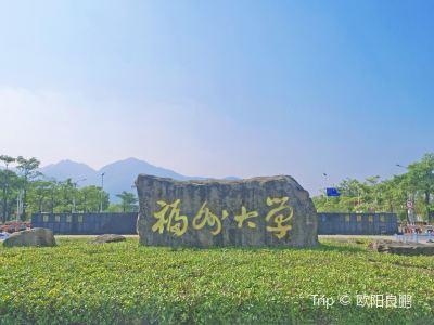 푸저우 대학교