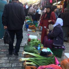 大馬士革門用戶圖片