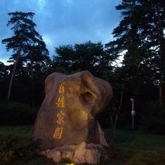 Meiren Songyuan (North Gate) User Photo