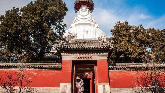 Temple of the White Dagoba (Baita Si)