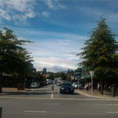 Wanaka Station Park User Photo
