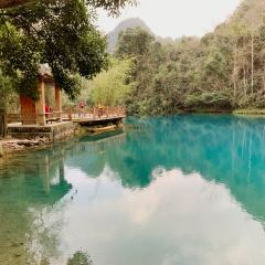 Wolong Pond User Photo