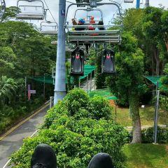 파이트 익스피리언스 싱가포르 여행 사진