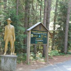 Algonquin Provincial Park User Photo