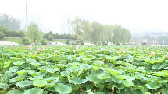 Tengzhou Museum
