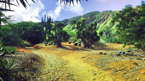 코코 크레터 식물원