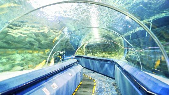 Fuguo Sea World