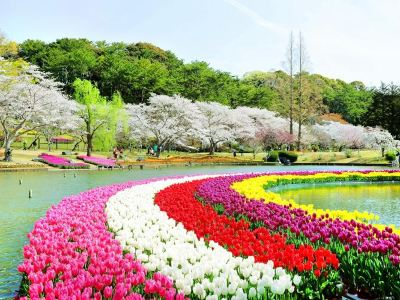 濱松花卉公園