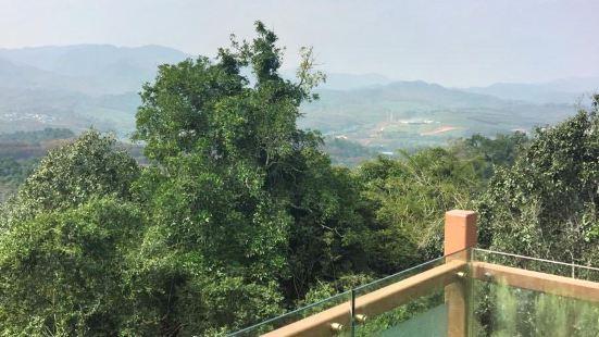 Xishuangbanna Nature Museum