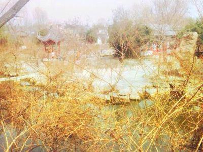 Jiangdi Amusement Park