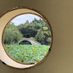 다관공원 여행 사진