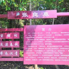 Weishan Lake National Wetland Scenic Area User Photo