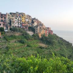 Corniglia User Photo