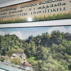 烏達瓦塔凱勒保護區用戶圖片