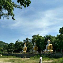 大象村用戶圖片
