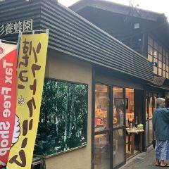 구로카와온천 여행 사진