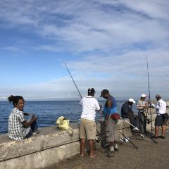Malecon User Photo