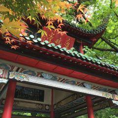 Autumn-Admiring Pavilion User Photo