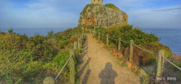 Cape of Good Hope2