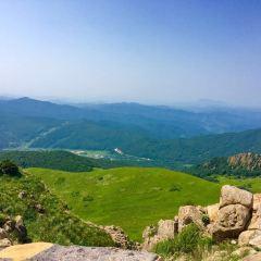 랴오허위안 국립삼림공원 여행 사진