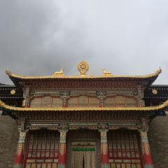 果洛白玉寺用戶圖片