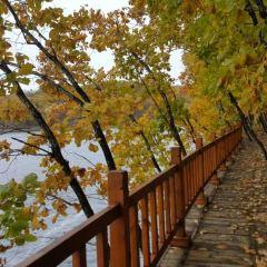五大連池山口湖用戶圖片