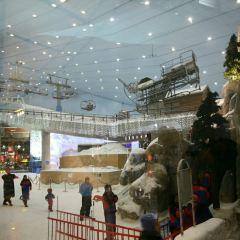 스키 두바이 여행 사진