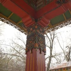 Norbulingka User Photo