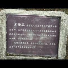 藥王谷用戶圖片