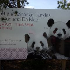 Toronto Zoo User Photo