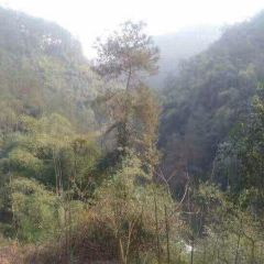 Feilongxia Nature Scenic Area User Photo