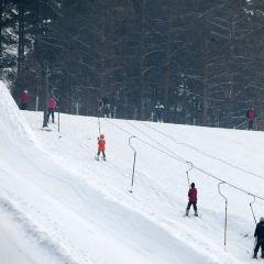 옌밍셰도 스키장 여행 사진