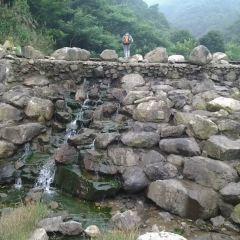 茶人谷用戶圖片