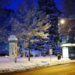 Karlovy Vary User Photo