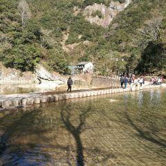 浙江龍湾潭国家森林公園のユーザー投稿写真