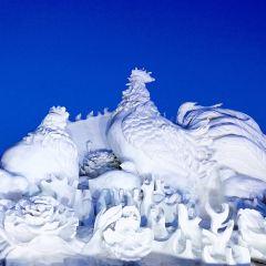 타이양섬 국제 설상 예술 엑스포 여행 사진
