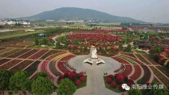 中國月季園