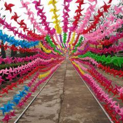 Dongshan Cultural Arts Park User Photo