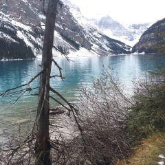 Lake Louise User Photo