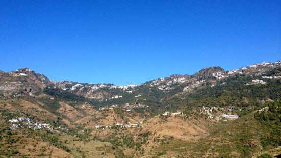 Vinog Mountain Quail Sanctuary
