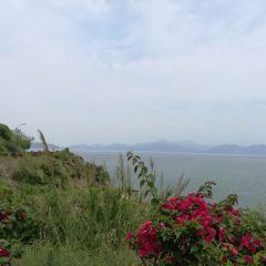 Xiayong User Photo