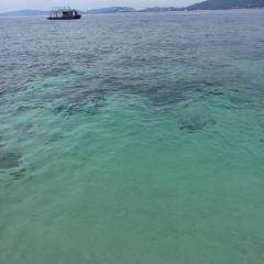 Dongmaozhou Island User Photo