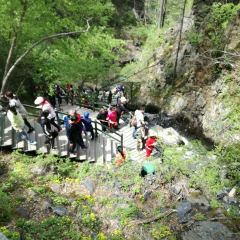 Phoenix Mountain National Forest Park User Photo