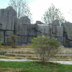 Wuqing Nanhu Green Expo Park User Photo