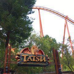 Six Flags Magic Mountain Theme Park User Photo
