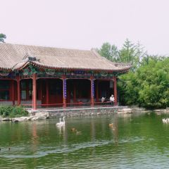 베이징 가든 엑스포 공원 여행 사진